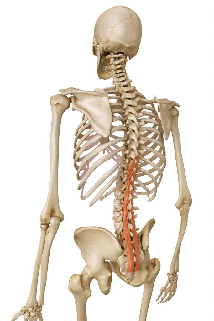 Neue Therapie bei Schmerzen im unteren Rücken | Blog Dr. Christopoulos