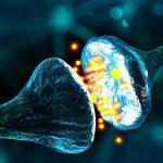 Neurologie - Schädigung der Nerven an der Wirbelsäule
